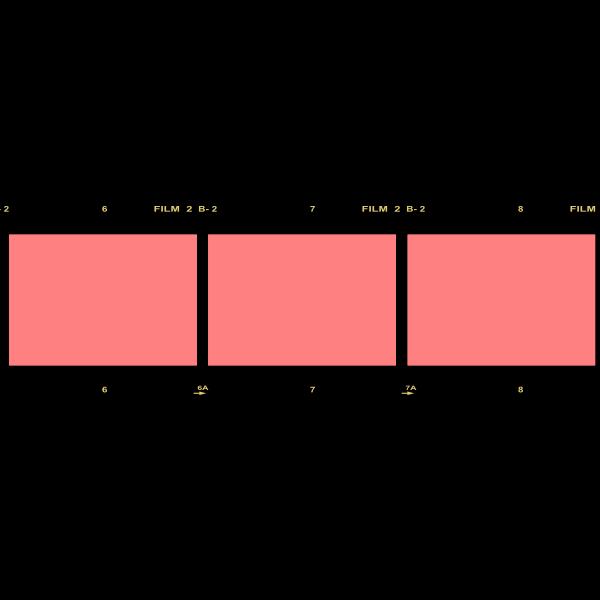 Photographic film vector illustration