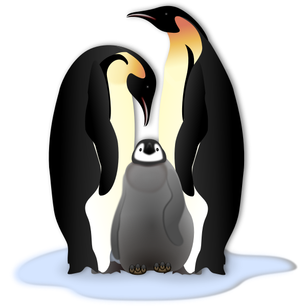 Penguin family in color illustration