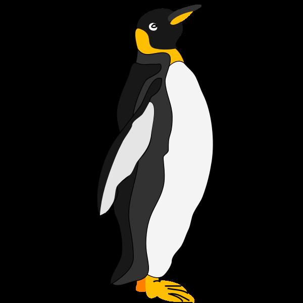 Architetto -- pinguino 1