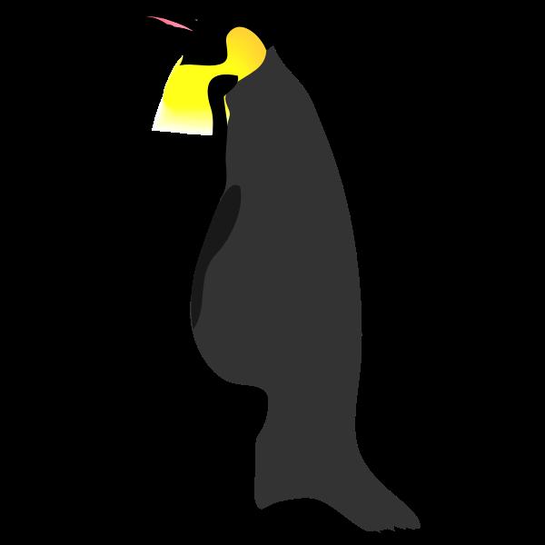 Architetto -- pinguino 2