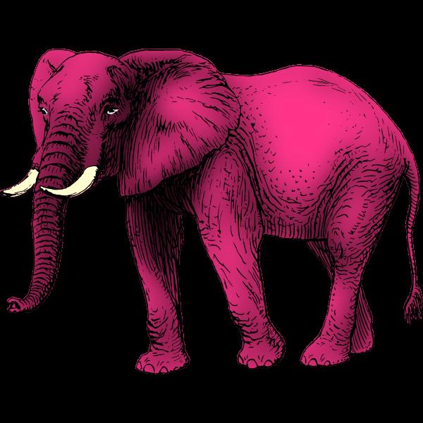 Pink elephant clip art
