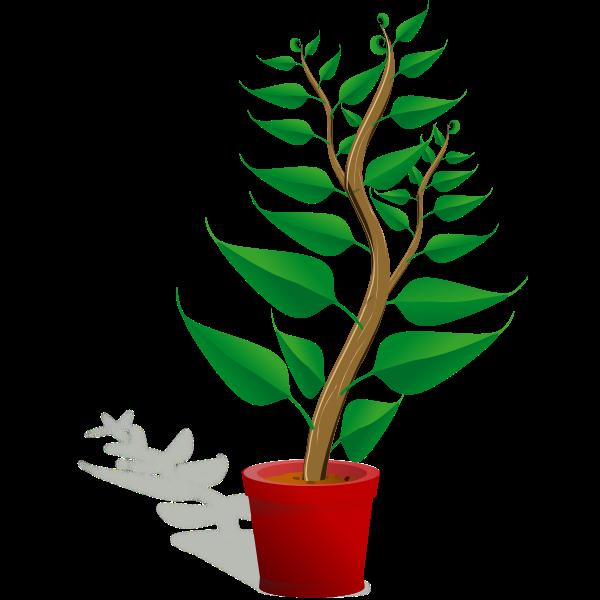 Green plant pot vector illustration