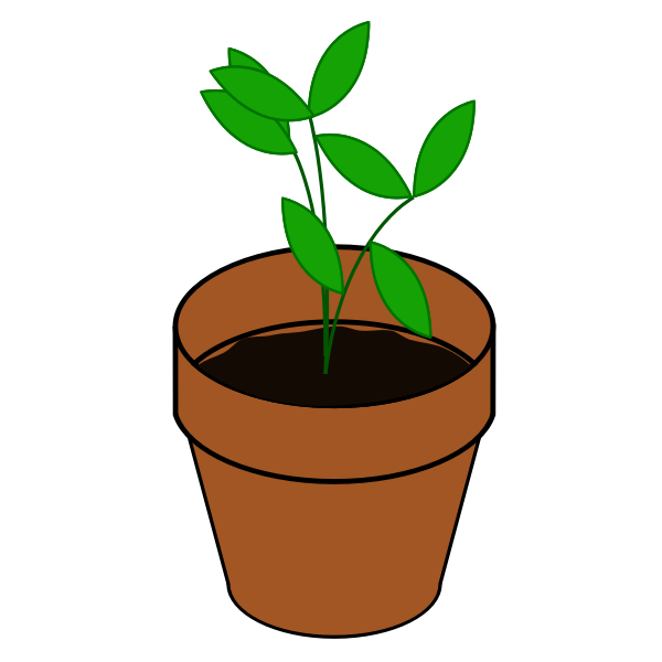 Vector image of simple plant in a terracotta pot