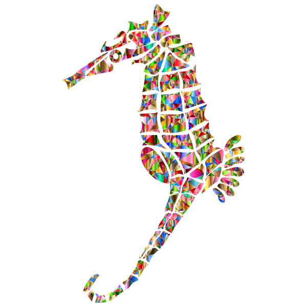 Polychromatic Stylized Seahorse Silhouette