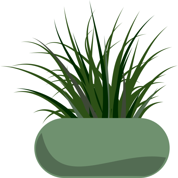 Vector graphics of grass planted in a green modern planter
