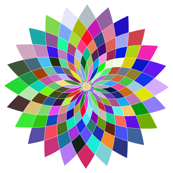 Prismatic Abstract Flower Line Art II