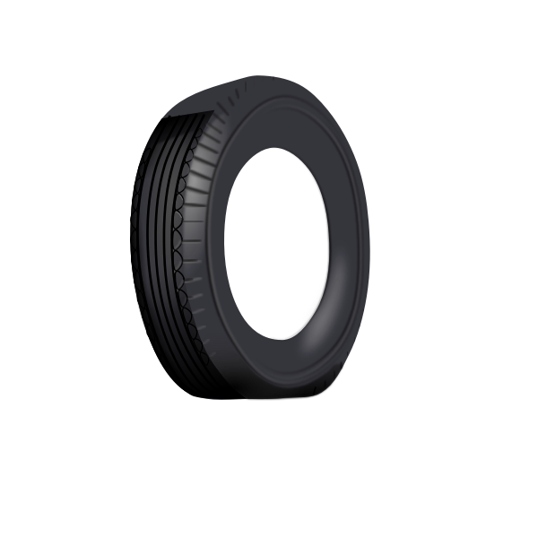 Tire outer tube vector image