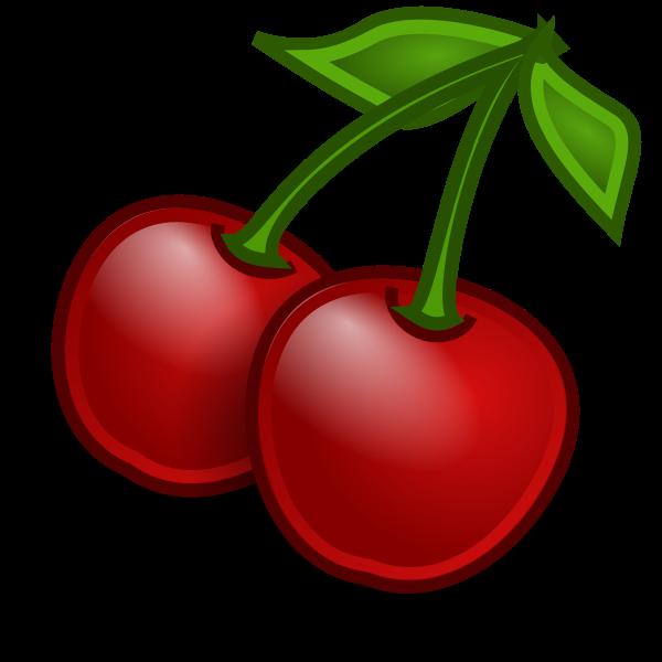 Cherries vector illustration