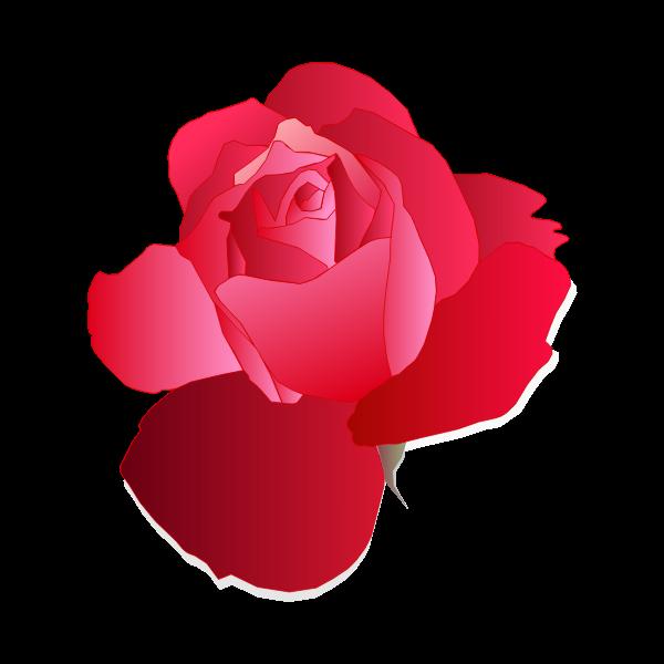 Digital drawing of red rose