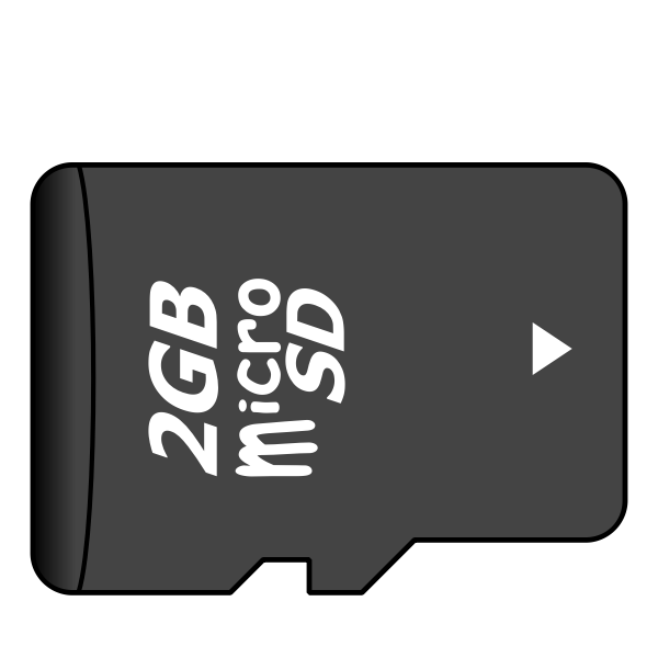 2GB microSD card vector illustration