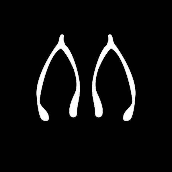 Flipflops vector image