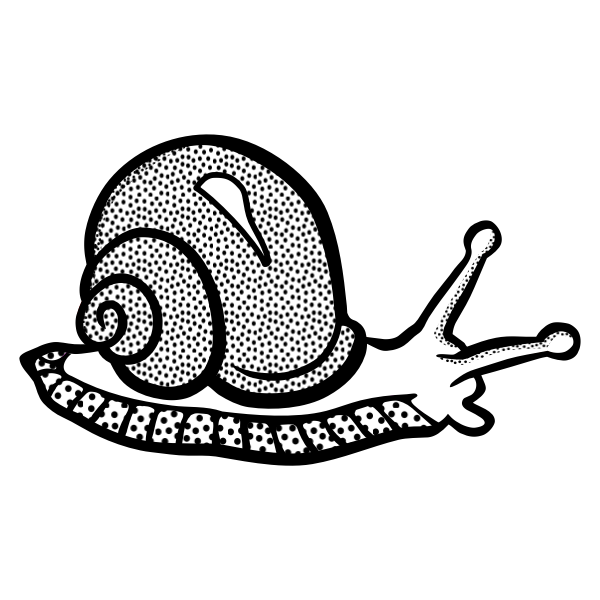 Spotty snail line art vector image