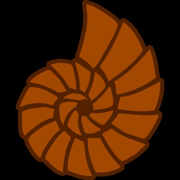 Seashell (#46)