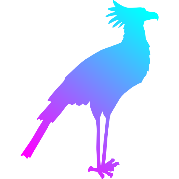 Secretary Bird Colour Reduced