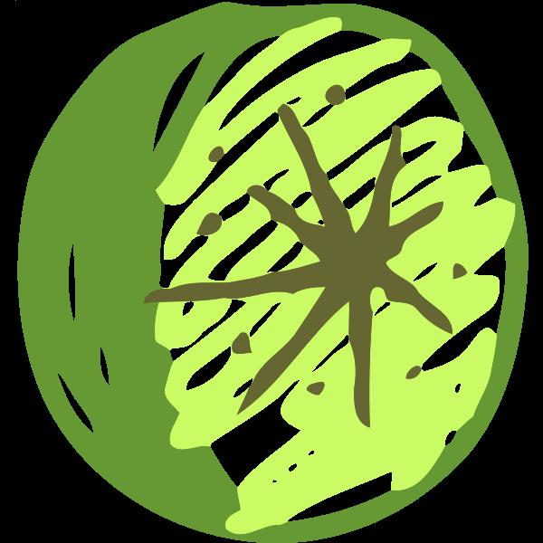 Sketched lime image
