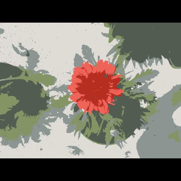 So many Missouri aiflowers flowers