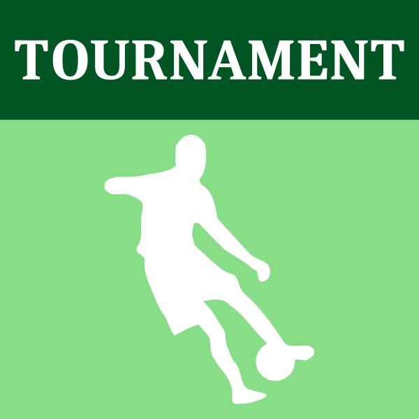 Soccer tournament icon vector image