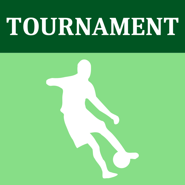 Soccer tournament icon vector image