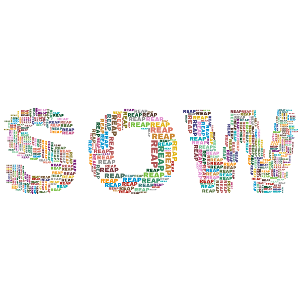 Sow Reap word cloud