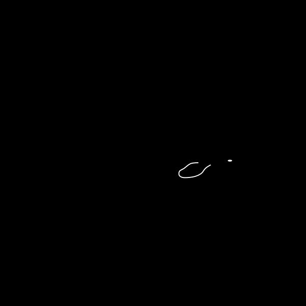 Sperm whale vector graphics