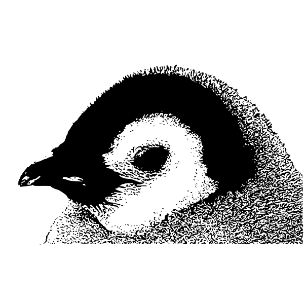 Vector image of emperor penguin chick head
