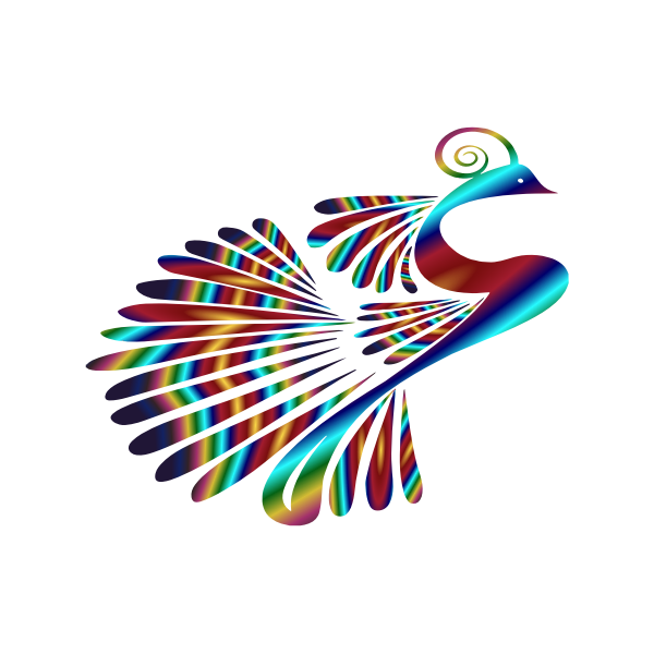 Stylized Peacock Colorful 3