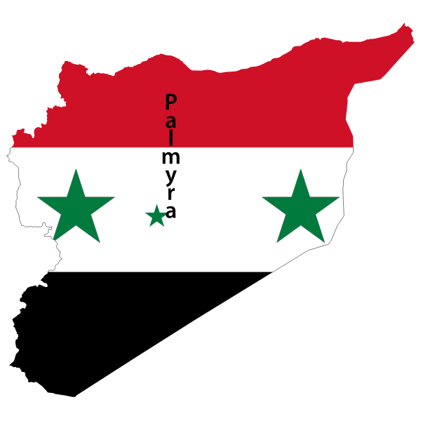 Syria map flag with Palmyra vector image