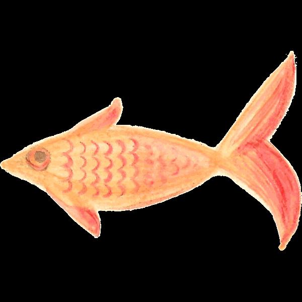 Orange fish sketch
