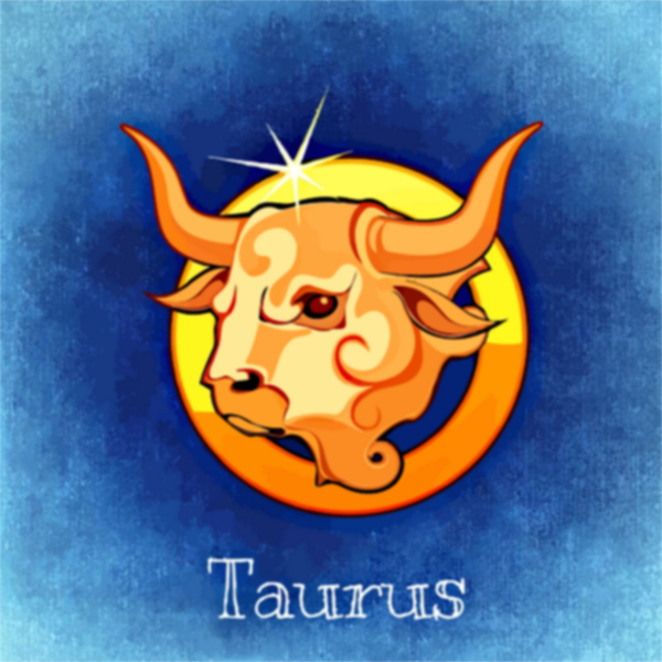 Taurus drawing