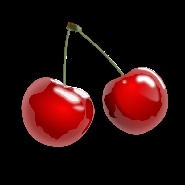 Cherries with shadow vector clip art