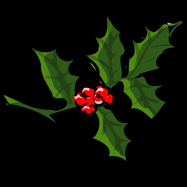 Vector clip art of holly branch