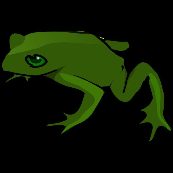 Frog vector art