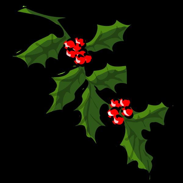 Holly tree for Xmas vector
