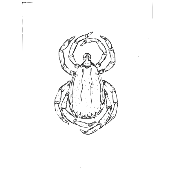 Tick image for clip art UNCLASSIFIED