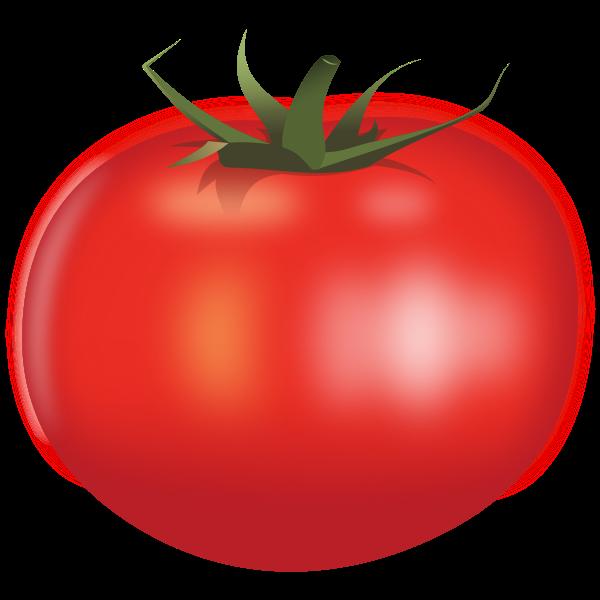 Juicy tomato