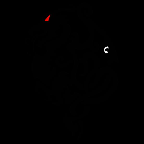 Red-eyed dragon