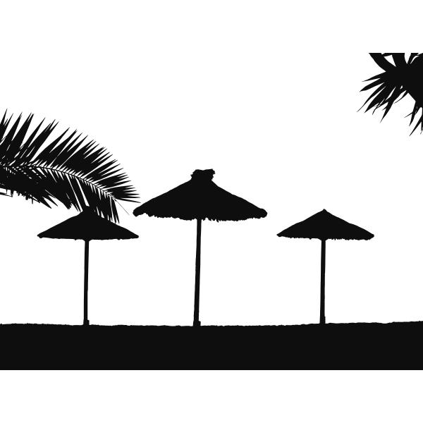 Tropical beach silhouette