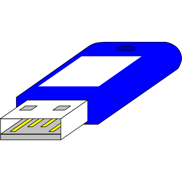 USB key from connector side vector image