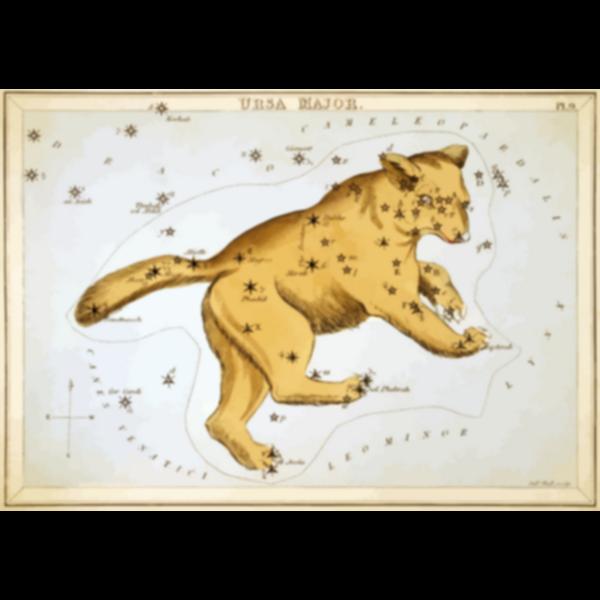 Star's chart