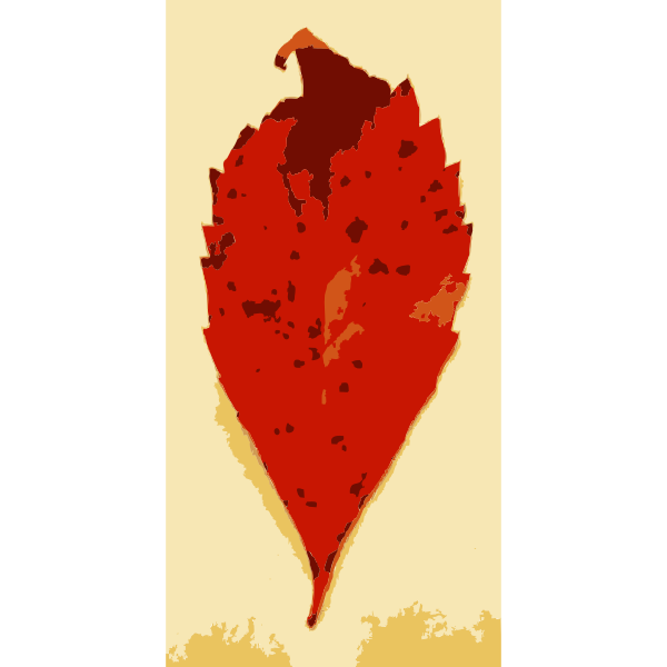 Various Missouri tree leaves 1