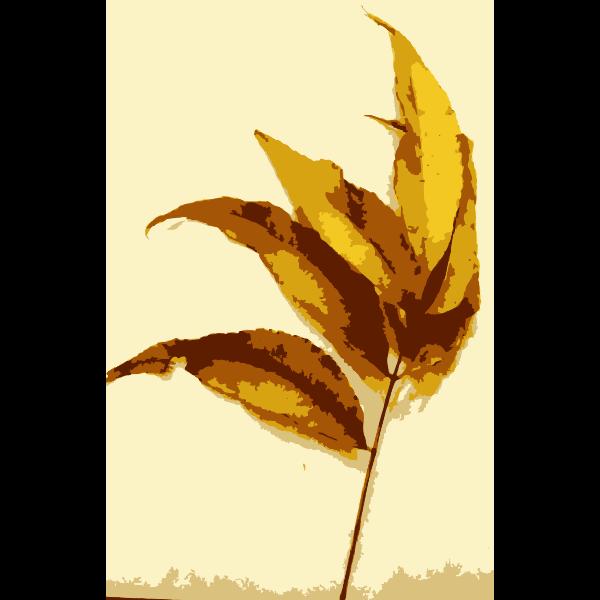 Various Missouri tree leaves 3