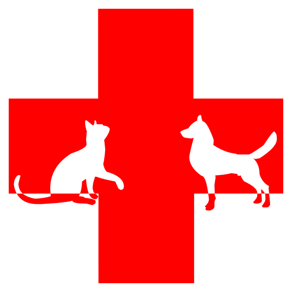 Veterinary First Aid