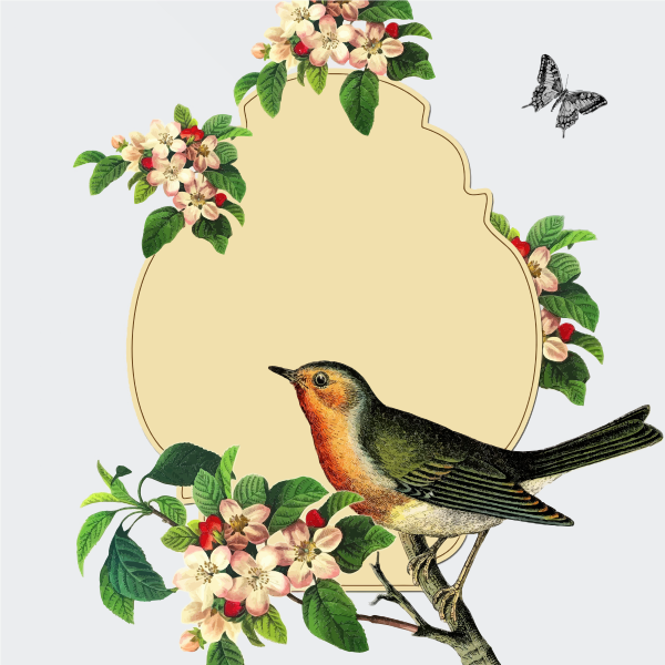 Small bird on an apple blossom tree vector image