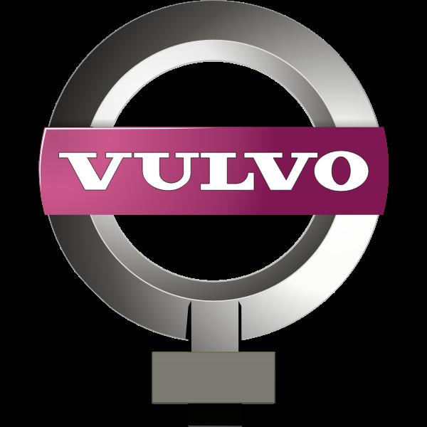 Vulvo