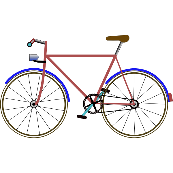 Color bicycle vector image