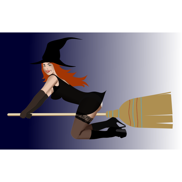 Witch on broom 2 by Rones