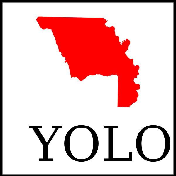 Yolo County tshirt