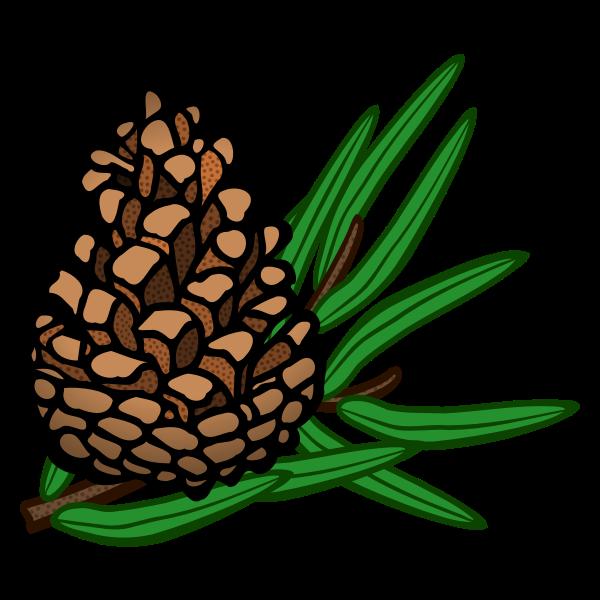 cone - coloured