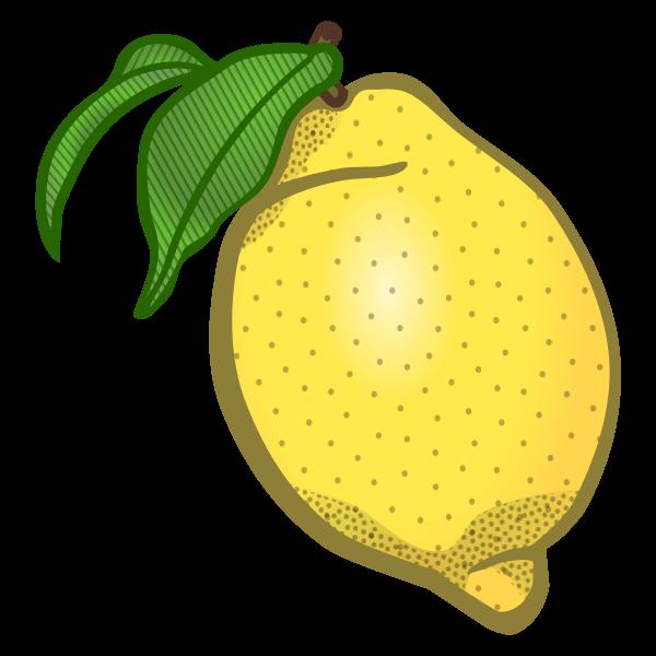 Lemon vector clip art
