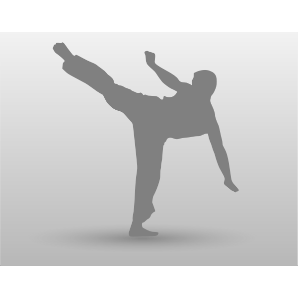 Vector drawing of karate man with leg up